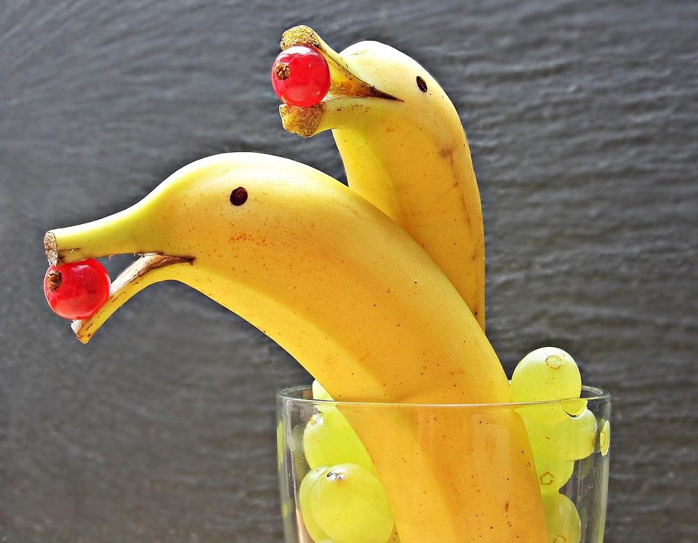 Banán nebo delfín? Zapojte svou představivost a kreativitu! Zdroj: Pixabay.com